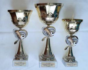 Poháry pro zúčastněné na turnaji 19. ročníku Memoriálu J. Vakoče